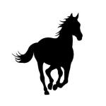 Dark_Horse_thumb